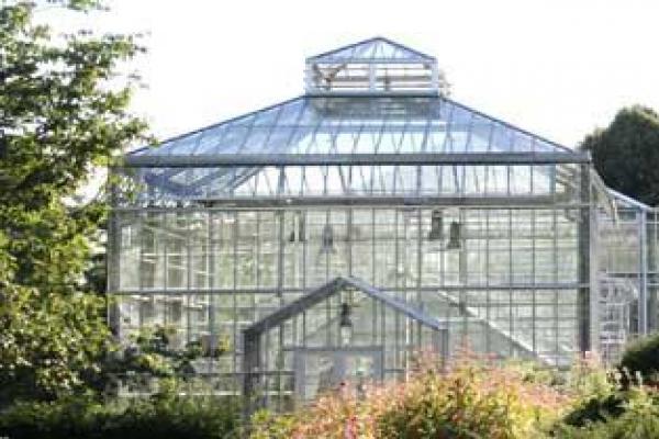Bärlauch botanischer volkspark pankow Botanischer Volkspark